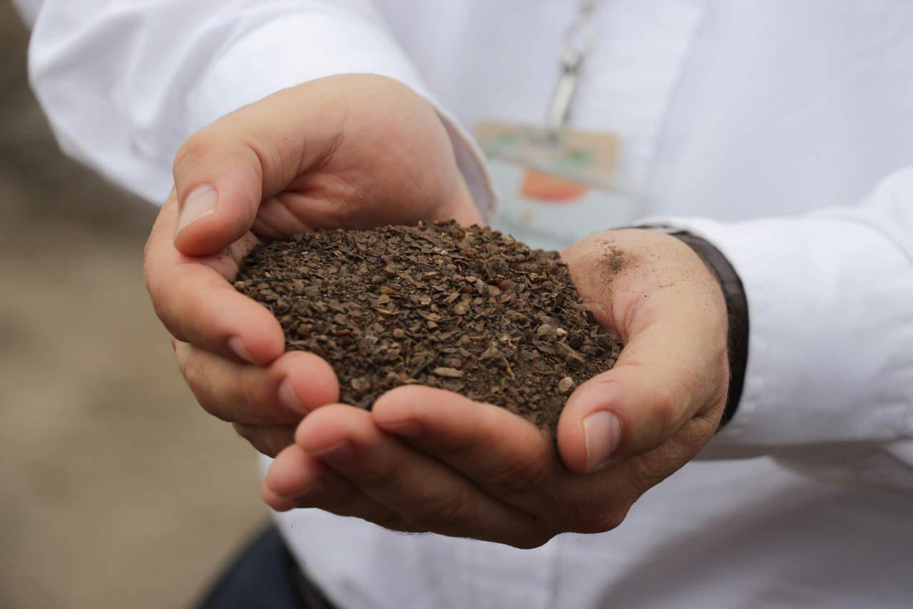 Composta casera, alternativa contra contaminación