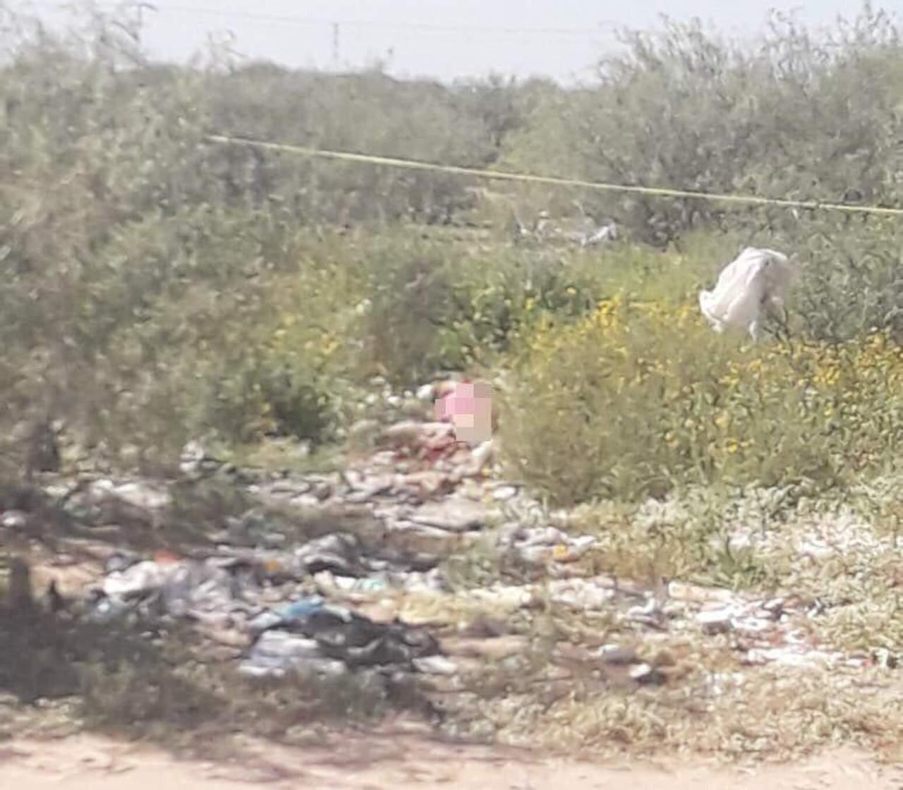 Localizan cadáver de mujer con huellas de violencia en Matamoros