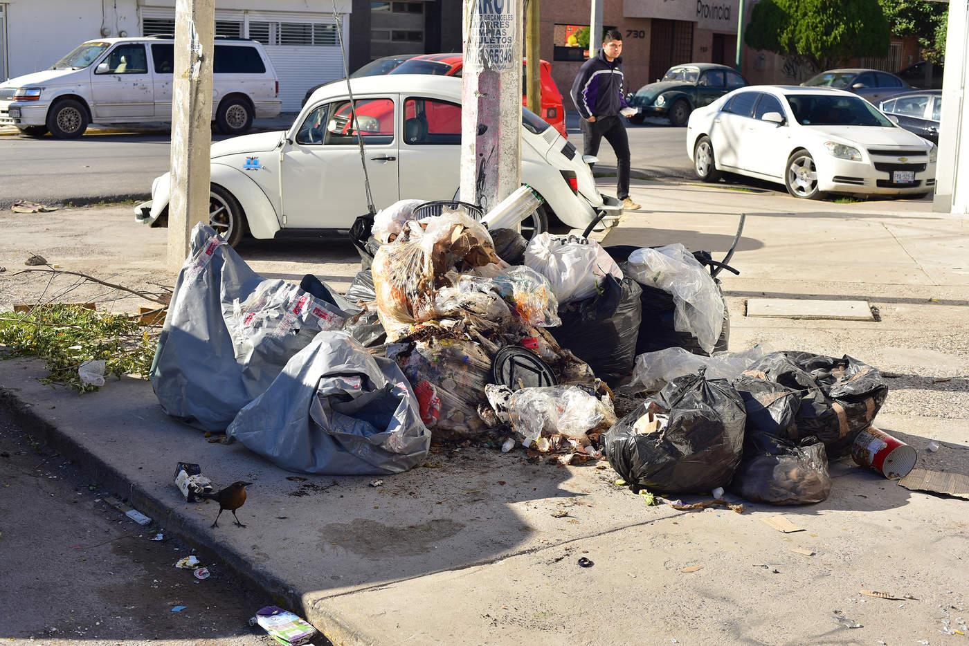 Montones de basura se acumulan, las cuales son el blanco de los perros callejeros. (EL SIGLO DE TORREÓN)