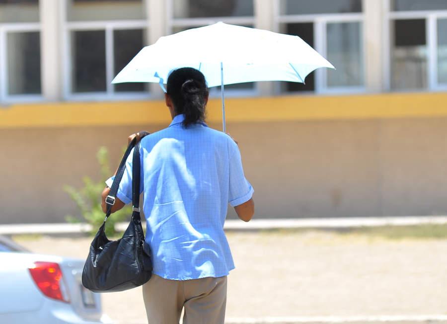 Es necesario tomar medidas para prevenir un golpe de calor o choque térmico que puede llevar a la muerte. (ARCHIVO)