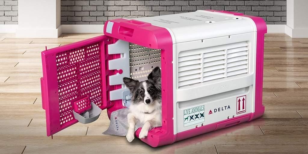 ste transportín fue desarrollado por la línea Delta en colaboración con la empresa CarePod. Gracias a su tecnología hará que tu mascota viaje tranquilo desde la cabina de equipaje evitando complicaciones en el camino.  (ESPECIAL)
