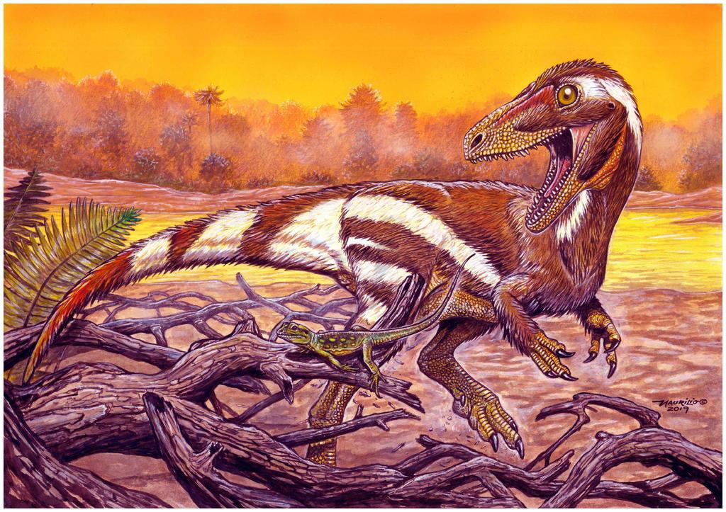 Un fósil de unos 115 millones de años encontrado en el noreste de Brasil y que pertenece a una especie hasta ahora desconocida de dinosaurio fue presentado por científicos del Museo Nacional de Río de Janeiro. (ARCHIVO)