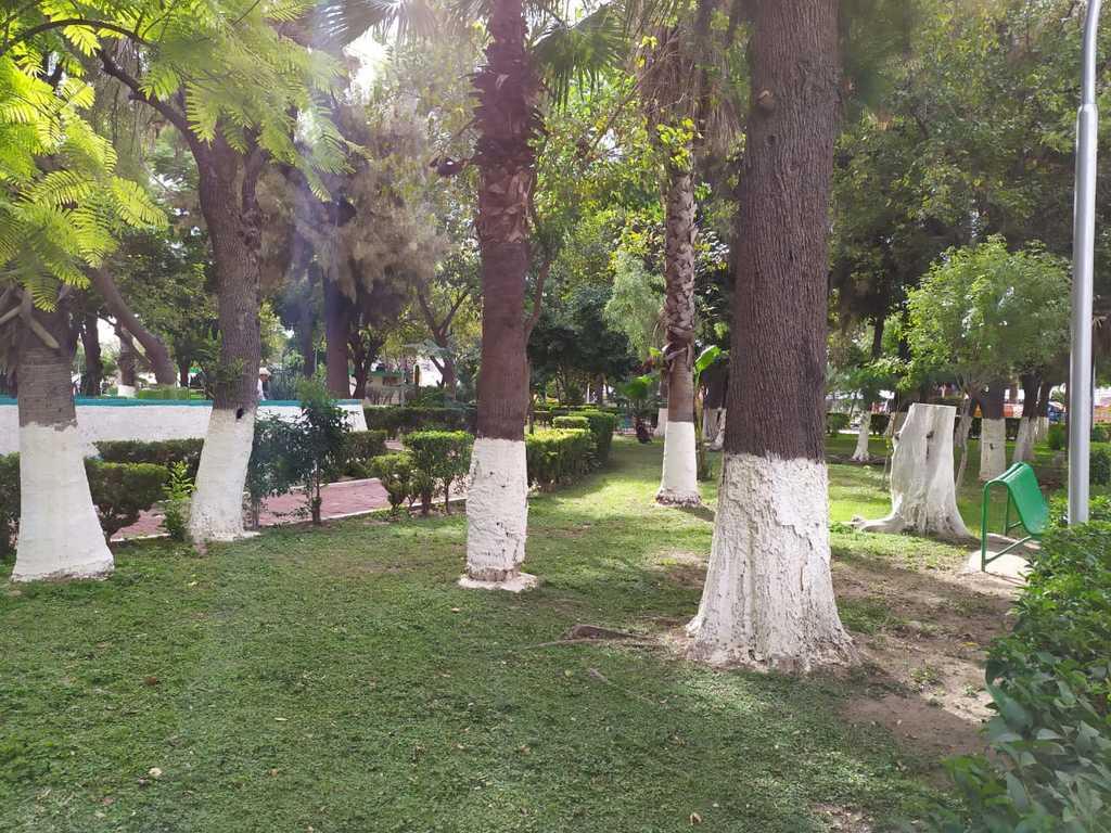 Se encuentra detenida una inversión de casi 10 millones de pesos del Fondo Metropolitano destinada a obras en el Parque Morelos.