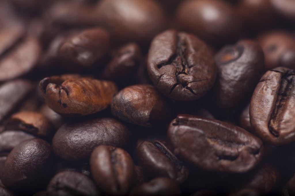 Desarrollaron un gel y un parche transdérmico con propiedades de la cafeína para combatir el sobrepeso y la obesidad.