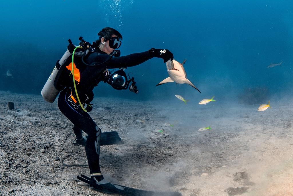APASIONADO. Iskander Itriago se sumerge en los océanos para interactuar con las especies que lo habitan. (CORTESÍA / Iskander Itriago)