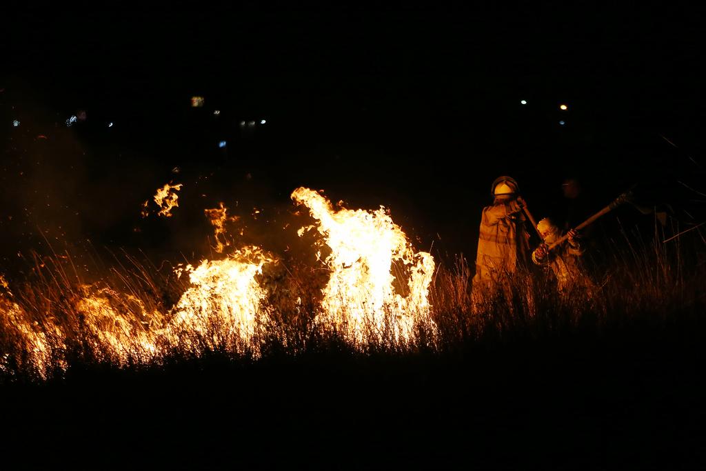 Un total de 341 hectáreas afectadas por el fuego en la entidad son de superficie herbácea. (EL SIGLO DE TORREÓN)