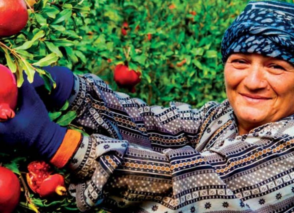 Las mujeres producen entre el 60 y el 80 por ciento de los alimentos de los países en desarrollo y la mitad de los de todo el mundo.
