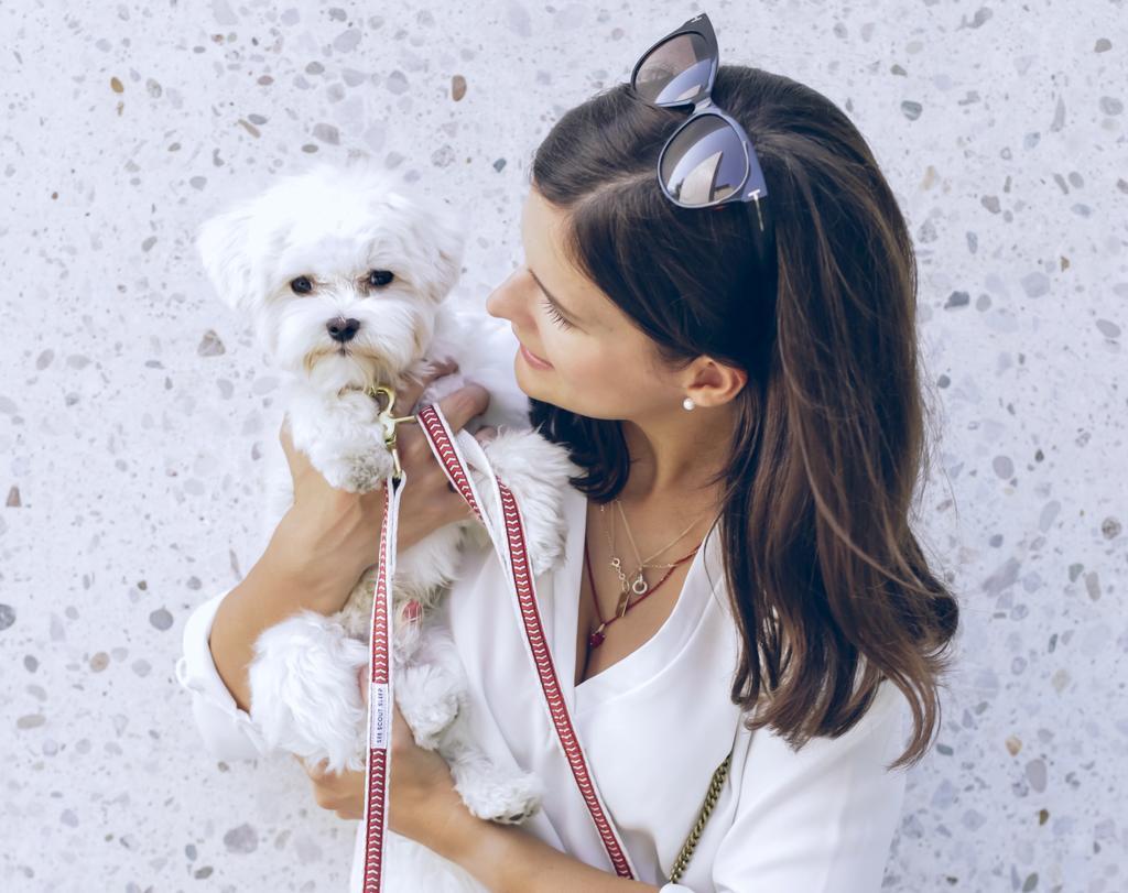 Todos merecemos el amor que se produce entre una persona y su mascota. (ESPECIAL)