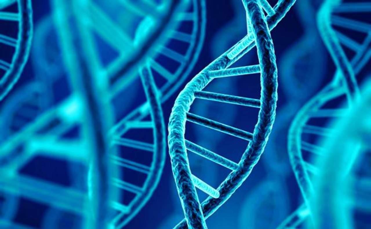 Un equipo internacional de investigación ha descubierto cientos de conexiones entre distintas enfermedades humanas a través de su origen común en nuestro genoma, lo que pone en entredicho la categorización de las enfermedades por órganos, síntomas o especialidad clínica. (ESPECIAL)